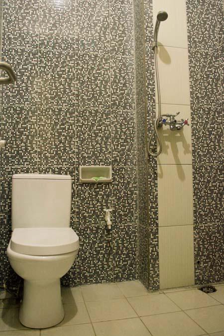 Toilet Standard