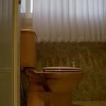 Toilet Executive